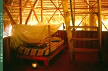 Heliconia Camp